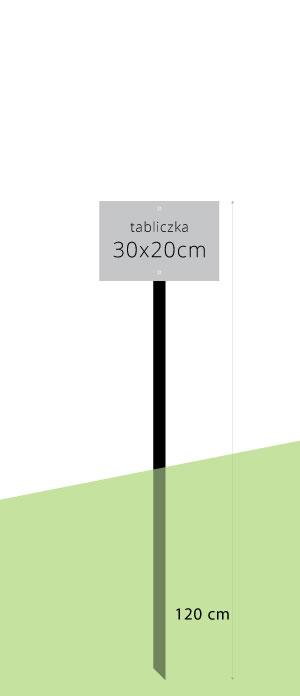 120 cm